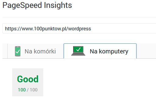 100 punktów Google Site Speed
